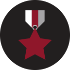 icon of a military medal